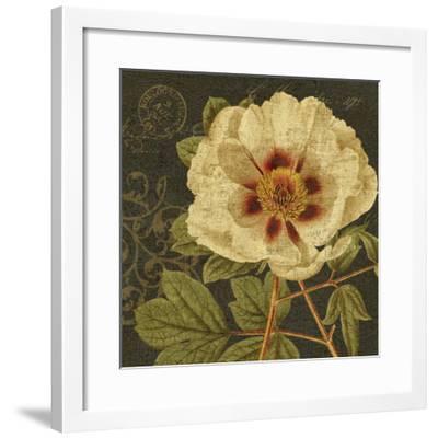 Bella-Nora I-Suzanne Nicoll-Framed Art Print