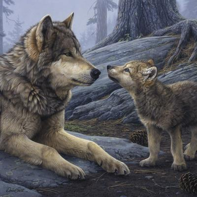 Brother Wolf (detail)-Daniel Smith-Framed Art Print