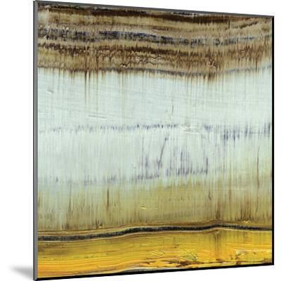 Dirty Rain-Grant Louwagie-Mounted Art Print