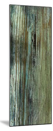 Boardwalk VII-Grant Louwagie-Mounted Art Print