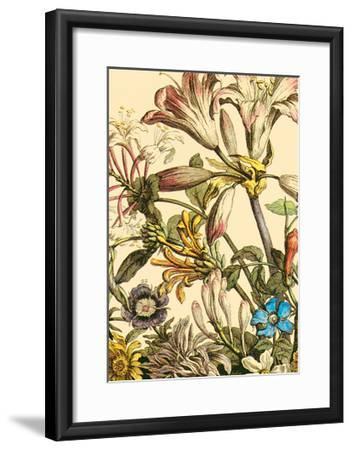 Furber Flowers III - Detail-Robert Furber-Framed Art Print