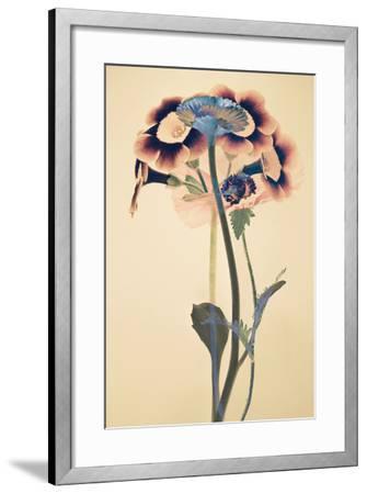 Paradigm-Katja Marzahn-Framed Art Print
