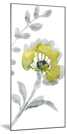 Verdant IV-Sandra Jacobs-Mounted Giclee Print