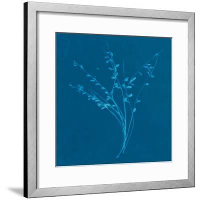 Wisp I-Sarah Cheyne-Framed Giclee Print