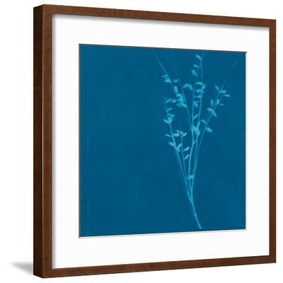 Wisp II-Sarah Cheyne-Framed Giclee Print
