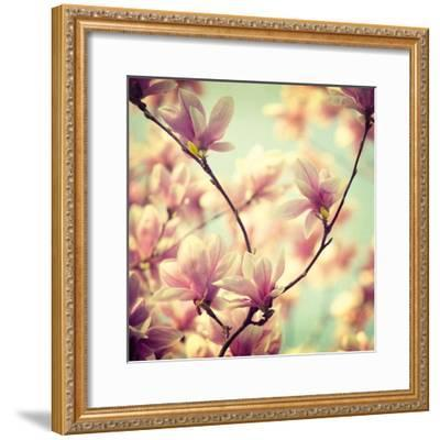 Magnolia Bloom I-Irene Suchocki-Framed Giclee Print