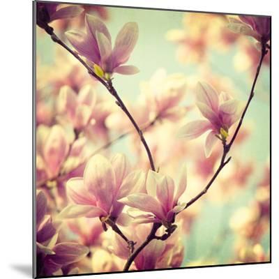 Magnolia Bloom I-Irene Suchocki-Mounted Giclee Print