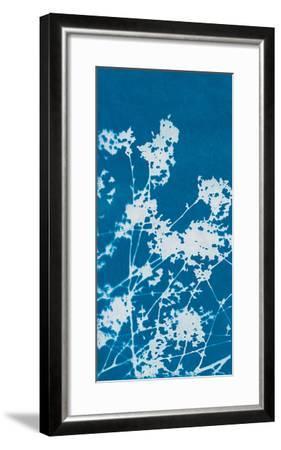 Ramble-Sarah Cheyne-Framed Giclee Print