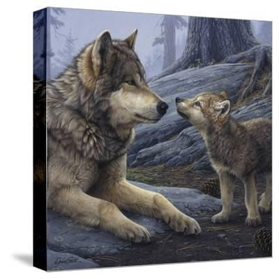 Brother Wolf (detail)-Daniel Smith-Stretched Canvas Print