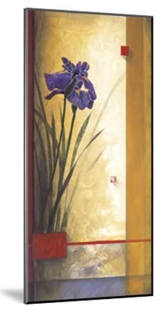 Mirage-Don Li-Leger-Mounted Giclee Print