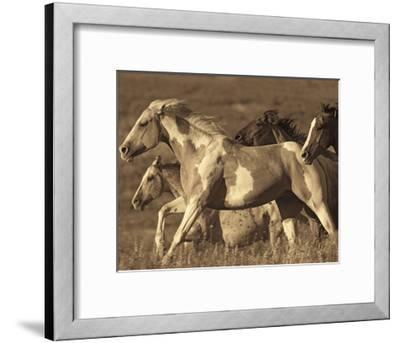 Like the Wind I-Wendy Caro-Framed Giclee Print