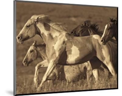 Like the Wind I-Wendy Caro-Mounted Giclee Print