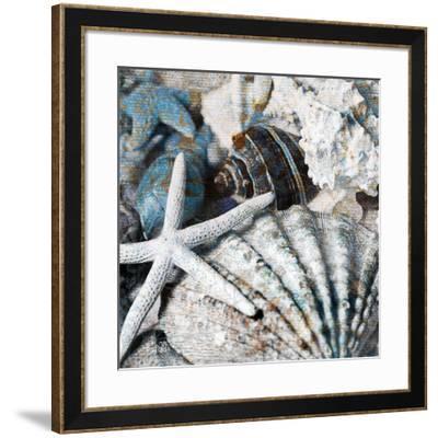 Seachells in Blue II--Framed Art Print
