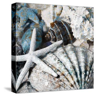 Seachells in Blue II--Stretched Canvas Print
