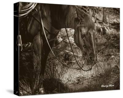 Brunch-Barry Hart-Stretched Canvas Print