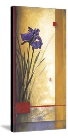 Mirage-Don Li-Leger-Stretched Canvas Print
