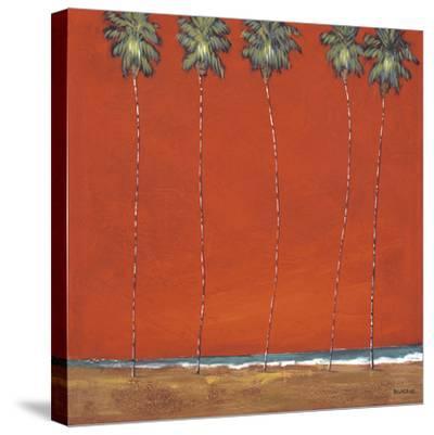 Miami Night-Dave Delacruz-Stretched Canvas Print