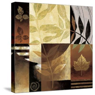 Nature's Elements II-Keith Mallett-Stretched Canvas Print