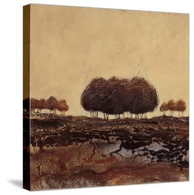 Oak Trees-Kerry Darlington-Stretched Canvas Print