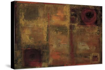 Voyage-Penny Benjamin Peterson-Stretched Canvas Print