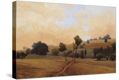 Chabanne-Kent Lovelace-Stretched Canvas Print