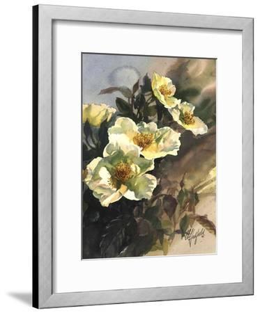 Hadfield Roses I-Clif Hadfield-Framed Art Print