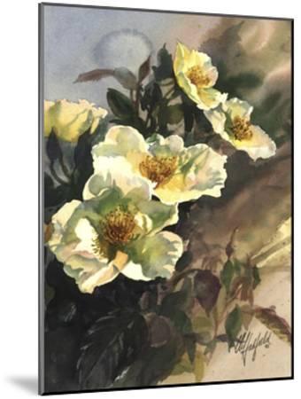 Hadfield Roses I-Clif Hadfield-Mounted Art Print