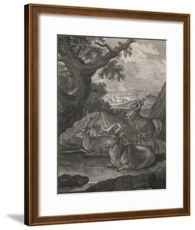 Woodland Deer VI-Ridinger-Framed Giclee Print