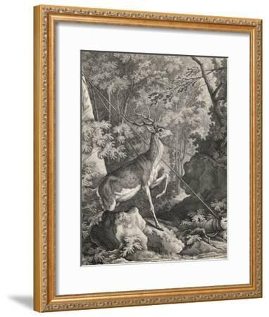 Woodland Deer VII-Ridinger-Framed Giclee Print