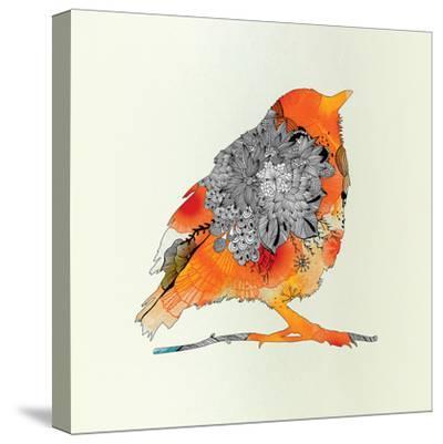 Orange Bird-Iveta Abolina-Stretched Canvas Print