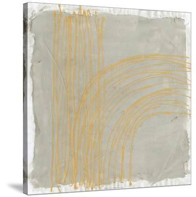 Echo Location I-Renee W^ Stramel-Stretched Canvas Print