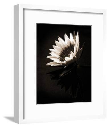 Dewdrops-X^ Luo-Framed Art Print