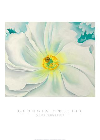White Flower, 1929-Georgia O'Keeffe-Framed Art Print