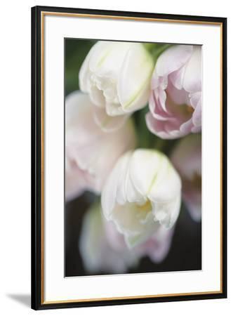 Foralis-Eva Charlotte Fransson-Framed Giclee Print
