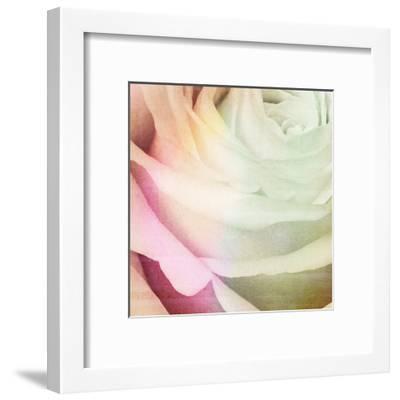 Macro Rose-Kristin Emery-Framed Art Print