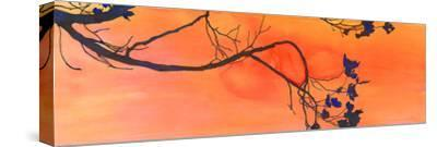 Branch Study-Jackie Battenfield-Stretched Canvas Print