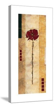 Sambar II-Linda Wood-Stretched Canvas Print