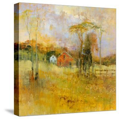 Country Dream-Longo-Stretched Canvas Print