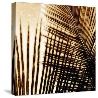 Light on Palms I-Malcolm Sanders-Stretched Canvas Print