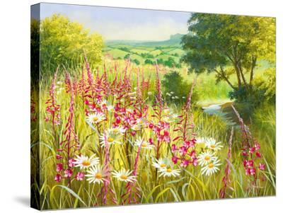 A Meadow In Spring-Mary Dipnall-Stretched Canvas Print
