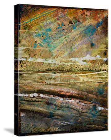 Hemisphere VIII-Douglas-Stretched Canvas Print