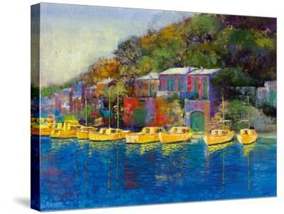 Gull Haven-Longo-Stretched Canvas Print