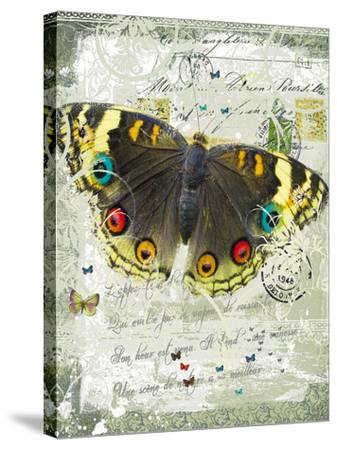 Papillon II-Ken Hurd-Stretched Canvas Print