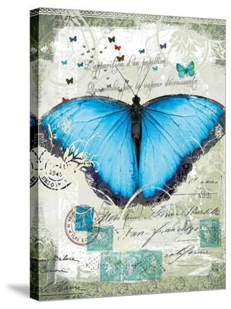Papillon III-Ken Hurd-Stretched Canvas Print
