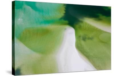 Green Tide I-Peter Adams-Stretched Canvas Print