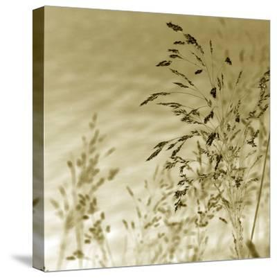 Patmos Organics II-Tony Koukos-Stretched Canvas Print