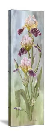Juliet-Jan Sacca-Stretched Canvas Print