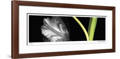 Synthesis 5-Pip Bloomfield-Framed Giclee Print