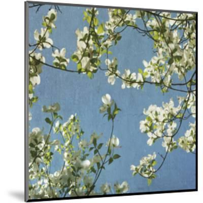 May Fourth-Donna Geissler-Mounted Giclee Print