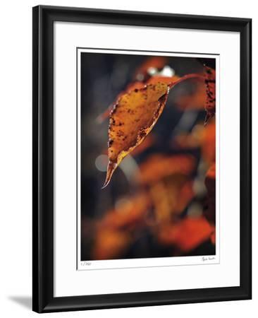 Fall Flames-Michelle Wermuth-Framed Giclee Print